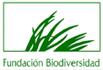 Estudi de blogs forestals